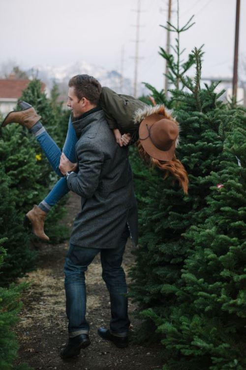 kerstboomaanzoek
