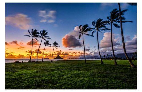 hawaii waar ligt dat