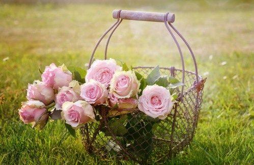 Jouw eigen trouwpagina, een must-have voor je bruiloft!