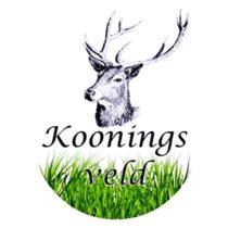 Minicamping Kooningsveld