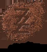 zz sweet studio_logo